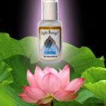 lotusflowercopy