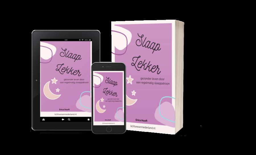 Slaap Lekker! eBook van Erica Hooft